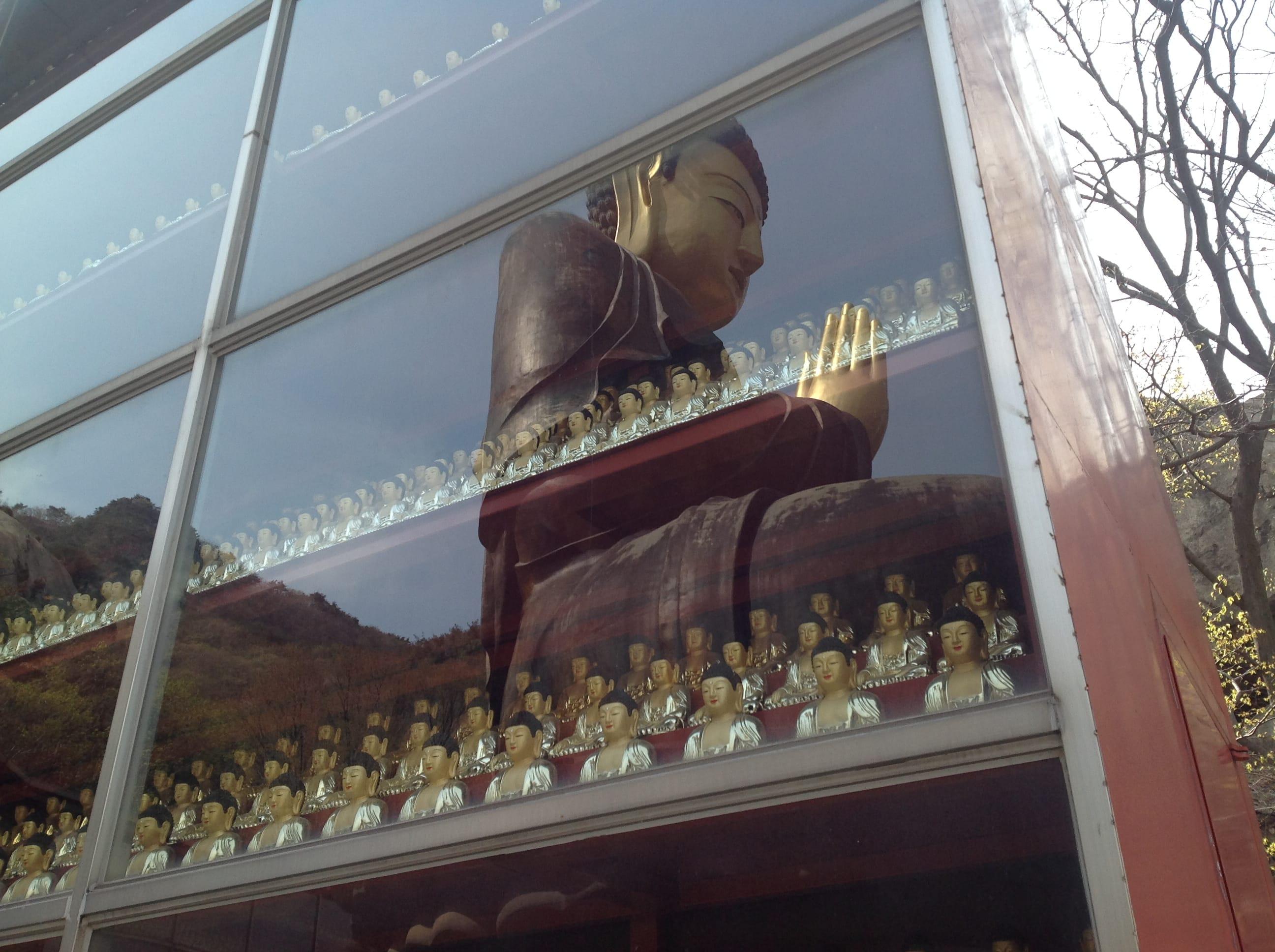 buddha statue hong kong