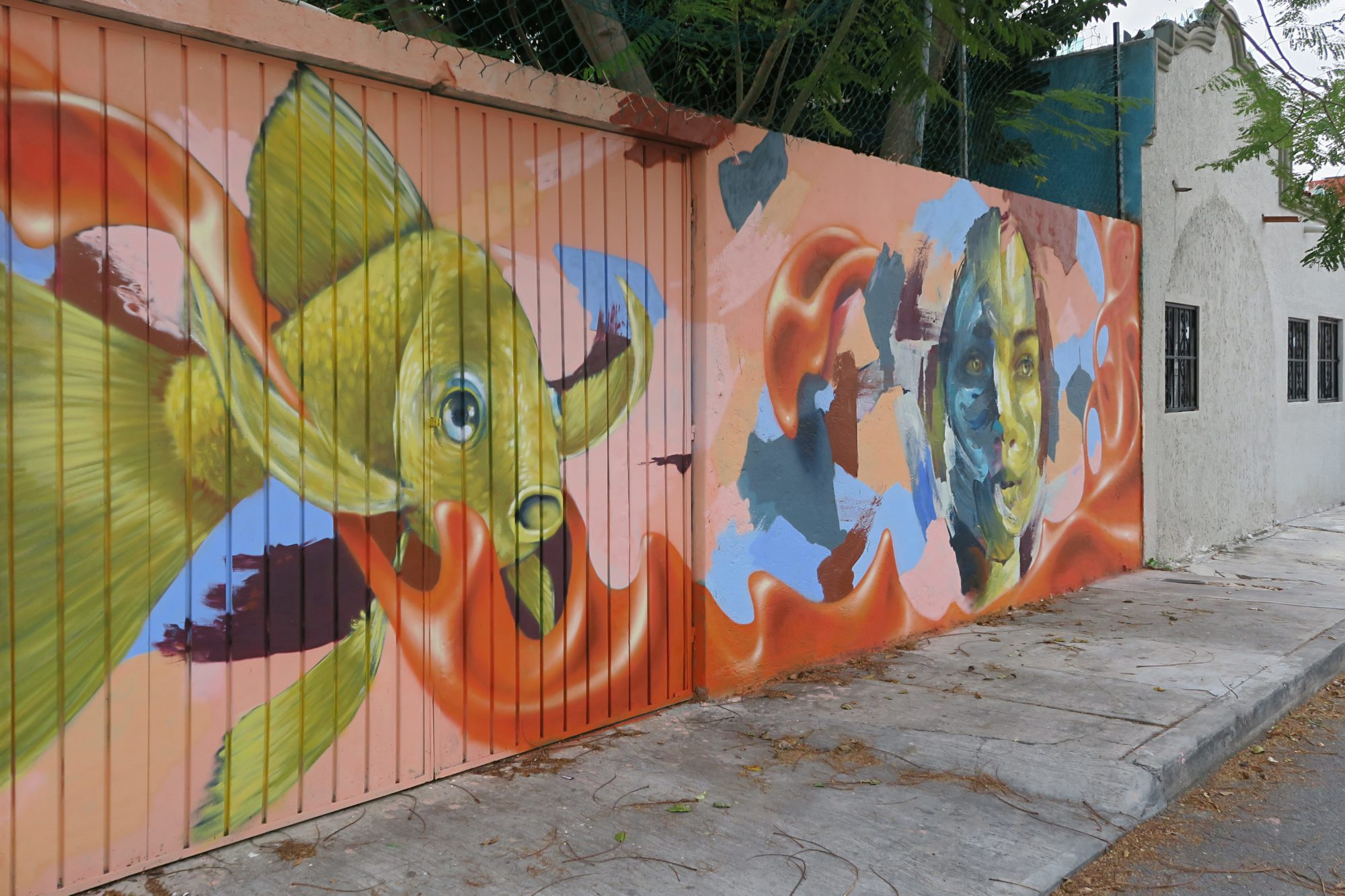 cancun, yucatan, graffiti