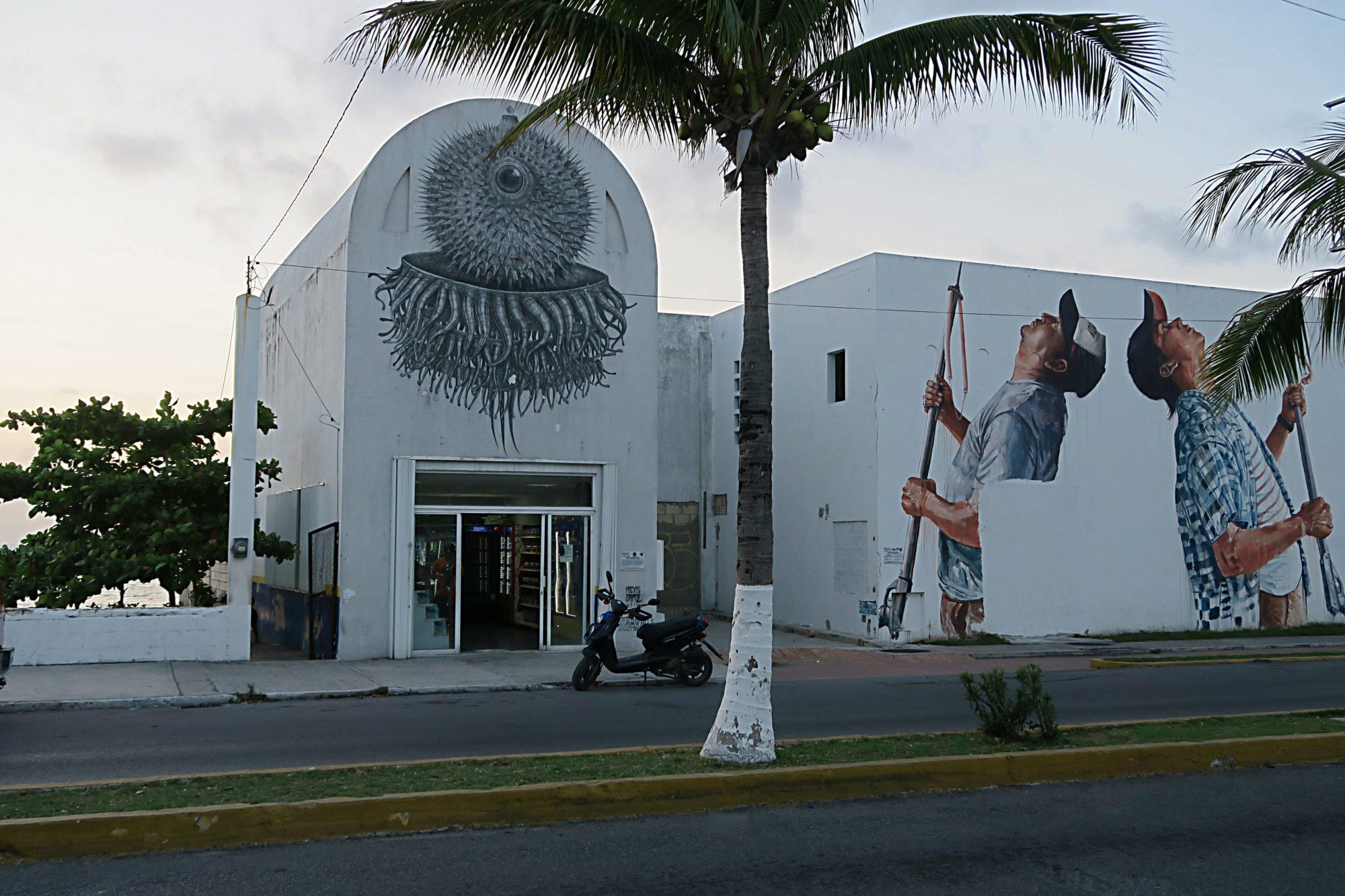 yucatan, cozumel