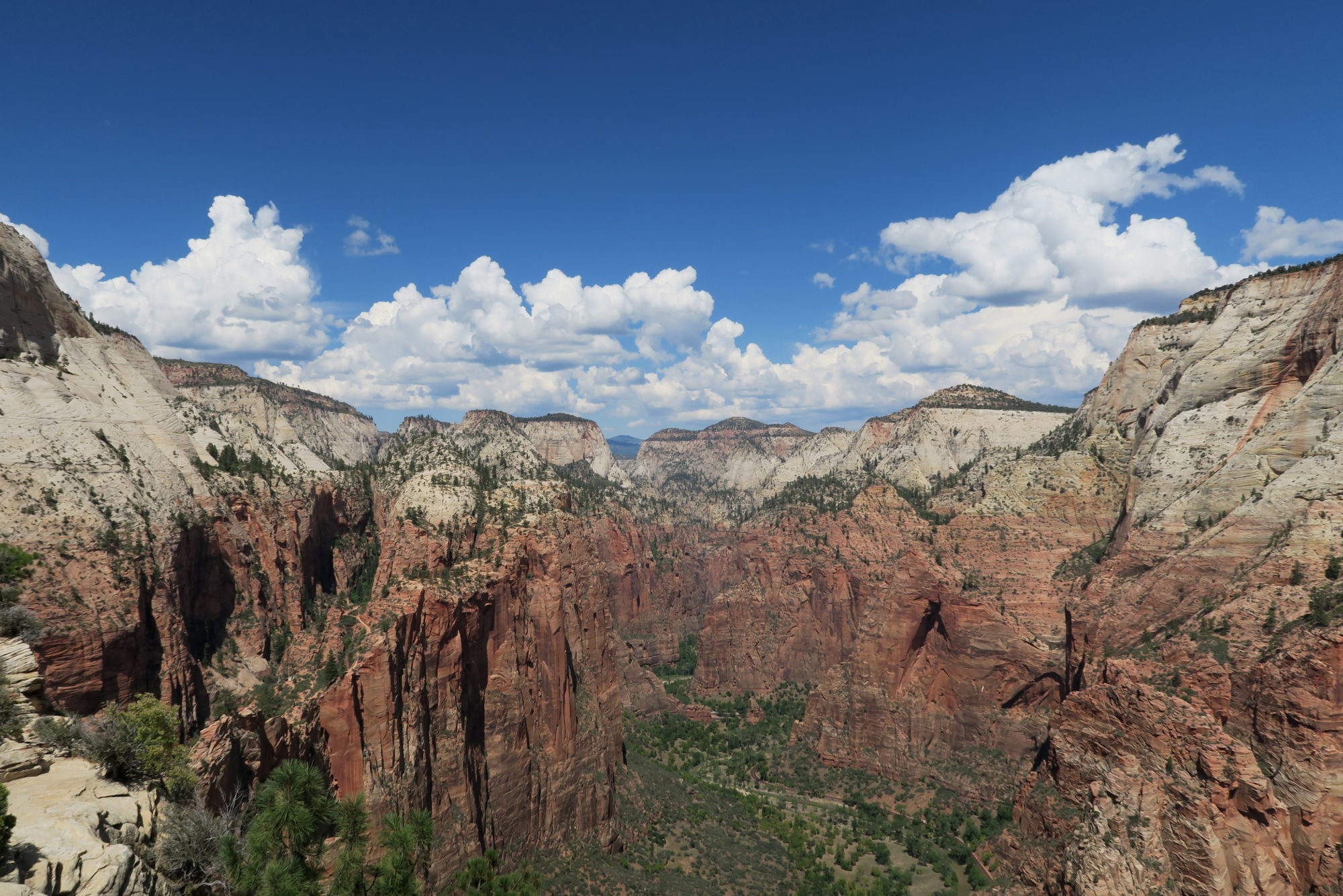 zion_overlook